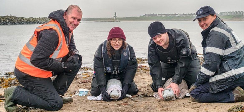 Marine Mammal Medics (Demo)