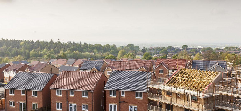 New Housing Development (Demo)
