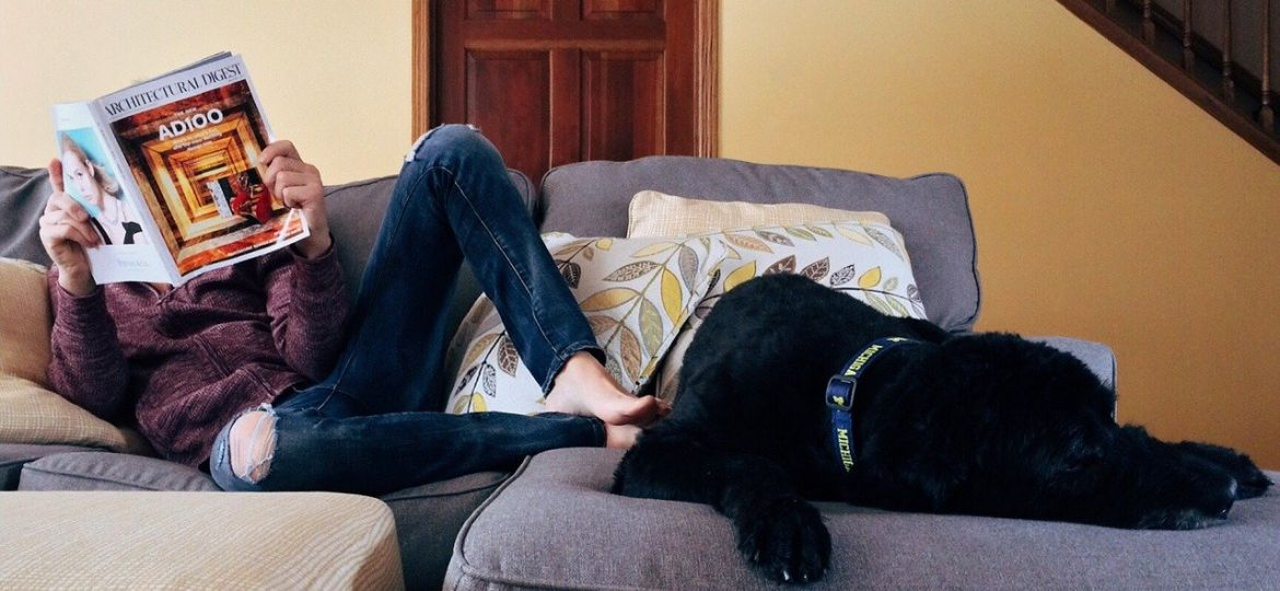 A person reading on a sofa sat next to a black dog.